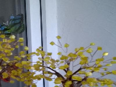 Декоративные деревья из бисера