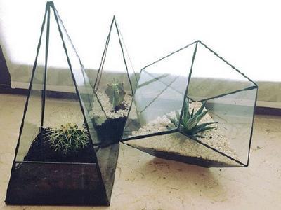Стеклянная пирамида для комнатных растений